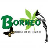 Borneo Nature Tours has dedicated offices in Lahad Datu and Kota Kinabalu to support her operations inthe East and West coasts of Sabah. In our efforts as Malaysian Borneo's Preferred Nature and Adventure Tour Operator, we are proud to have an inspiring team which aims to exceed our clients' expectation in service delivery, product innovation and professionalism so as to make each and every stay in Sabah a truly unique and memorable experience.