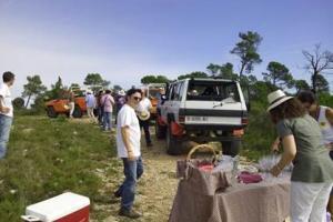 Grape & wine activity in Penedés region