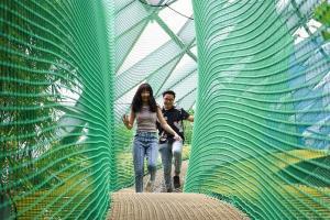 Sky Net - Bouncing Net in Jewel Canopy Park
