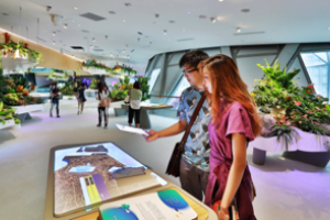 Changi Experience Studio Hanging Garden