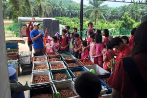 Guided Coffee Tour