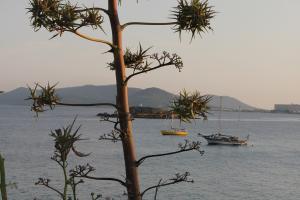 Mediterranean sea resorts