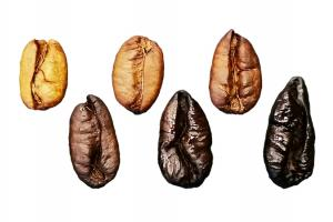 Roasted Liberica beans