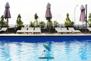 Swimming Pool for Family