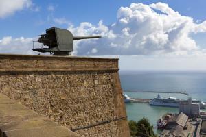 Defensive cannon