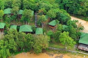 Borneo Excursions Myne Resort Bilit Kinabatangan