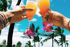 Drinks in Island