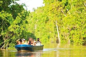 Borneo Excursions Sukau Kinabatangan River Sabah Malaysian Borneo