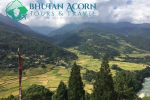 The fertile Punakha Valley
