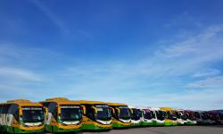 Borneo Excursions Cruiseship Shorex Coaches Fleet